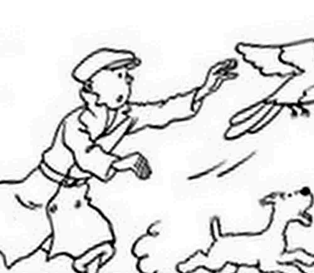 Coloriage tintin et milou - Tintin gratuit ...